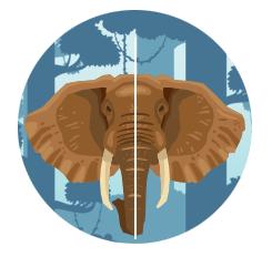 Symmetry Example Elephant