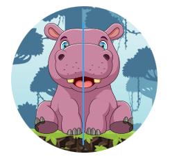Symmetry Example Hippo