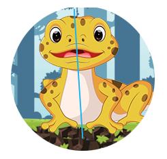 Symmetry Example - Lizard