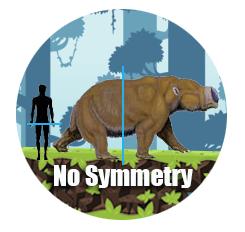 Symmetry Example - Megafauna