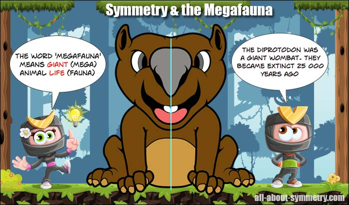 Symmetry in the Megafauna